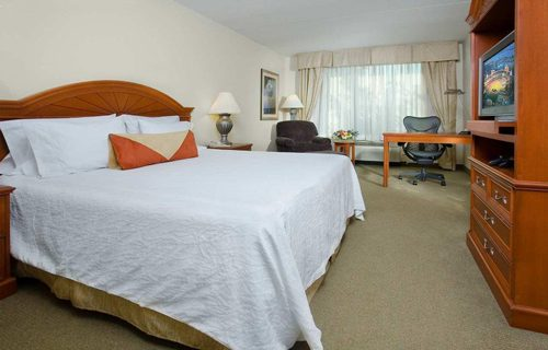hilton_garden_inn_detroit_downtown_room
