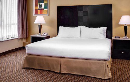 holiday_inn_express_suites_detroit_suite1