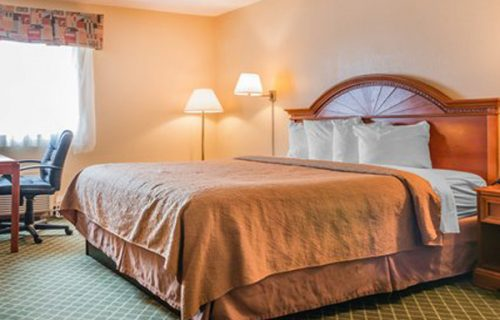 quality_inn_suites_romulus_room